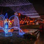 Богата и разнообразна програма за Коледа и Нова година е подготвила Община Велико Търново  (виж програмата по дни и часове)