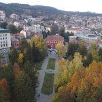 Третират парковете и зелените площи във Велико Търново срещи кърлежи и бълхи